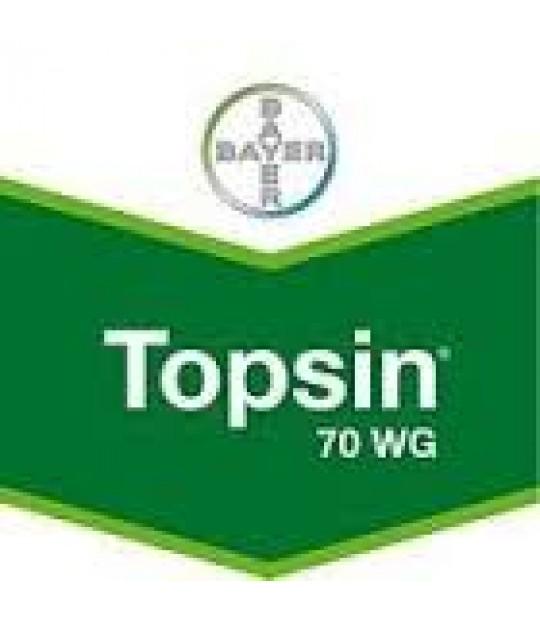Topsin WG, 1 kg