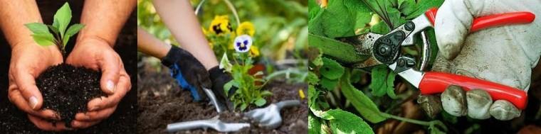 gardening-services-auckland-banner