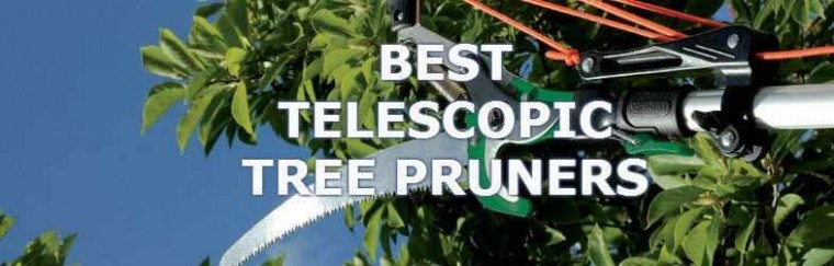 telescopic-tree-pruner
