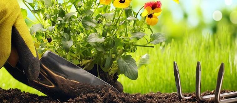 gardening-tools-hartlepool-1140x350
