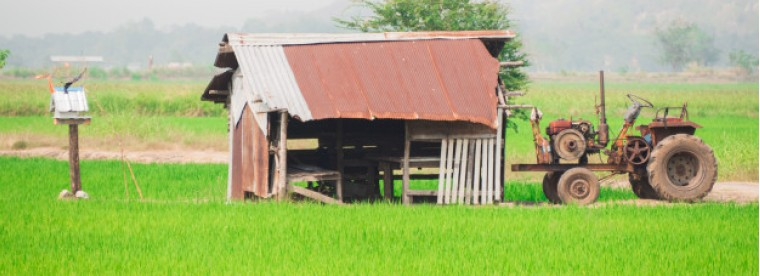 view-green-rice-fields-shack_43668-20