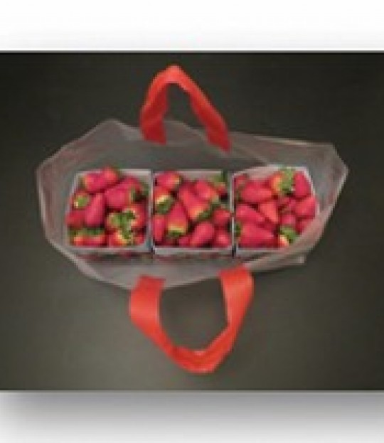 Bærepose strawberry for 3 kurver, 1000 stk